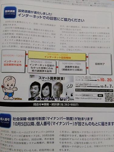 15-09-11-14-00-50-338_photo.jpg