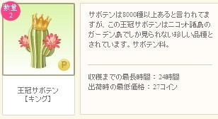 2012y08m21d_キングサボテン詳細.jpg