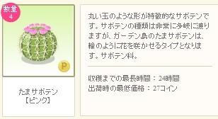 2012y08m21d_玉サボテン詳細.jpg
