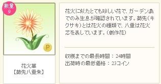 2012y08m24d_花火華詳細.jpg
