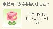 2012y08m28d_いちごの種.jpg