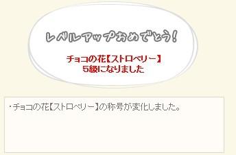 2012y09m05d_チョコ花イチゴが5級に.jpg