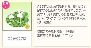 2012y09m06d_うさぎ草詳細.jpg
