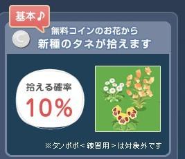 2012y09m07d_うさぎ草イベント①.jpg