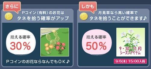 2012y09m07d_うさぎ草イベント②.jpg
