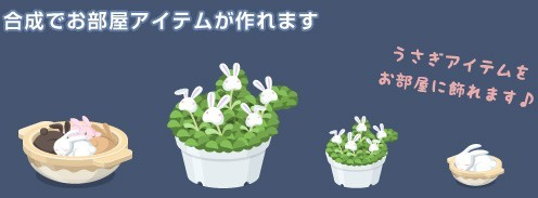 2012y09m07d_うさぎ草イベント③.jpg
