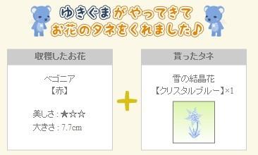 2012y12m11d_雪の結晶花.jpg