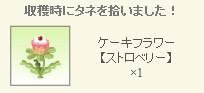 2013y02m01d_ケーキフラワーレア種ゲット.jpg