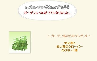 2013y02m04d_ガーデンレベル77.jpg