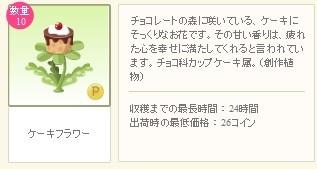 2013y02m07d_ケーキフラワー詳細.jpg