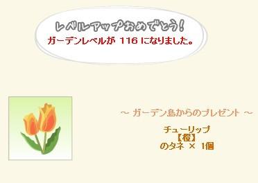 2014y08m13d_ガーデンレベル116.jpg